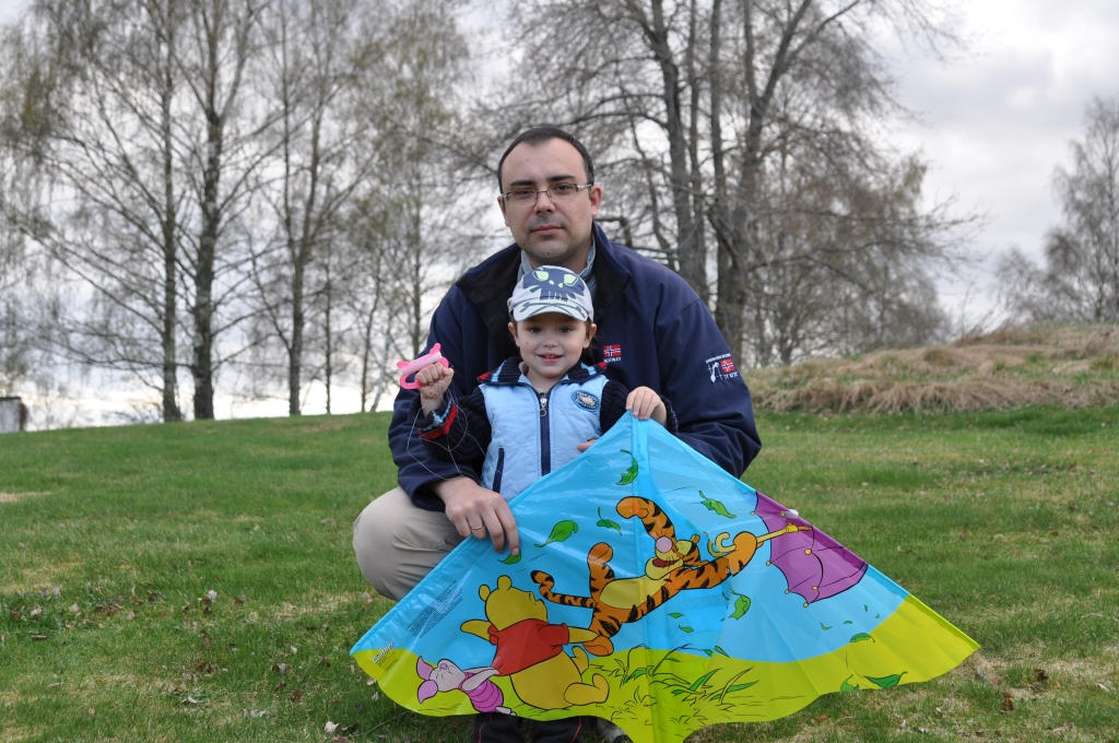 A picture containing grass, outdoor, kite, person  Description automatically generated